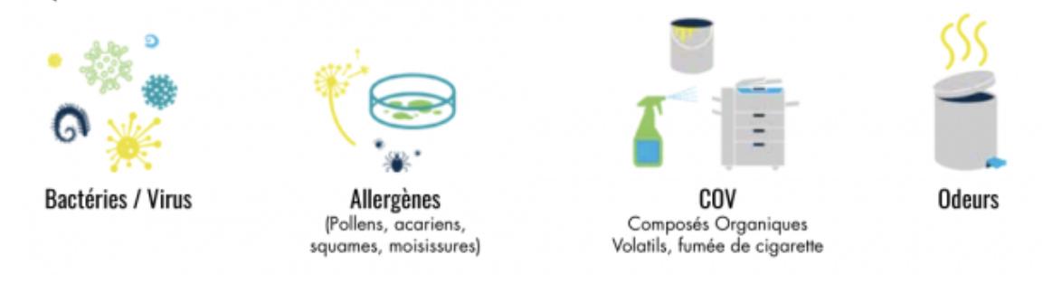 Pourquoi purifier l'air ergo project